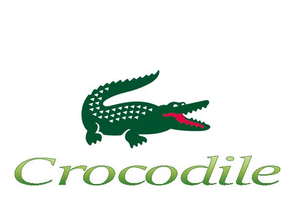 Brand Crocodile